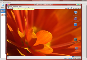 Debian in virtualbox OSE svn adoldo